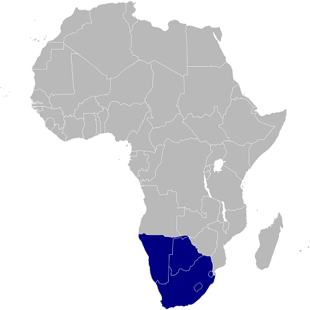 Cartina Africa Sud.Riassunto Africa Meridionale Scuolissima Com
