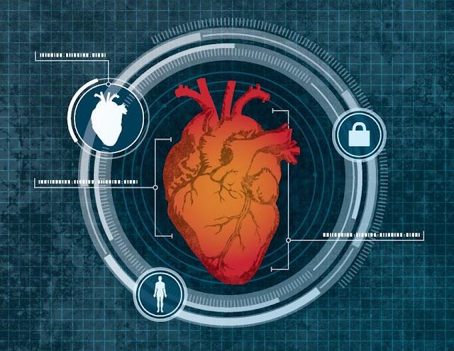 Сканирование сердца – новая система бесконтактной биометрической идентификации для смартфонов и ПК!