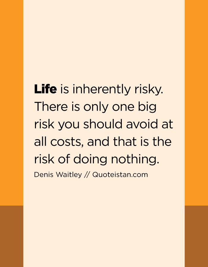 Life is inherently risky. There is only one big risk you should avoid at all costs, and that is the risk of doing nothing.