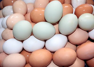 Huevos morenos y huevos blancos