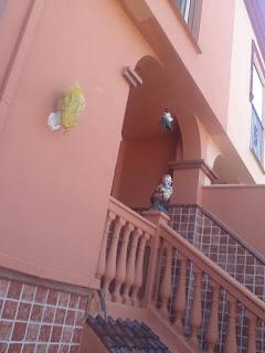 pintura exterior fachada reformas malaga