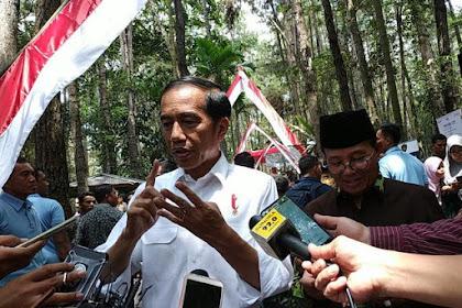 Jokowi Minta Petani Tak Lagi Tanam Sawit dan Karet, Karena...