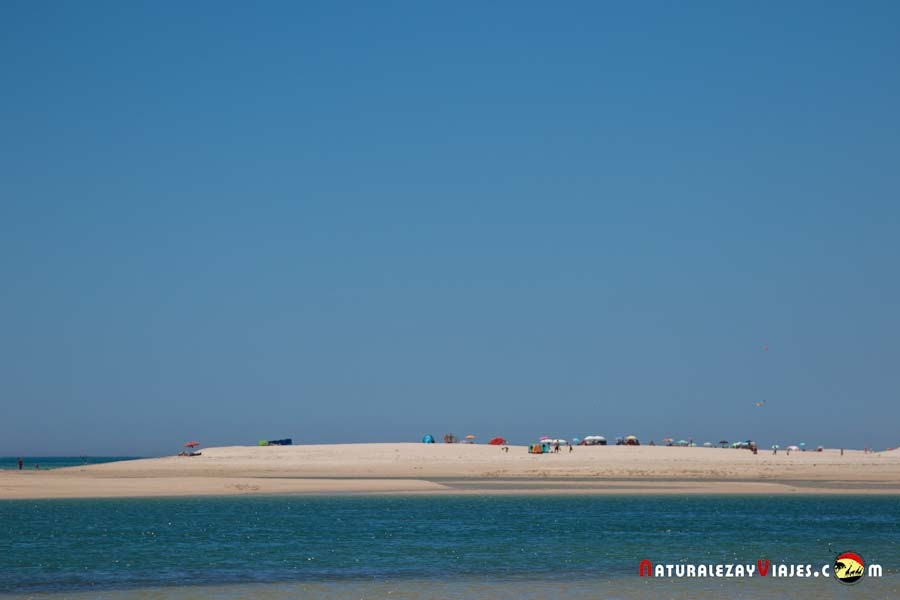 Barra Nova, Algarve