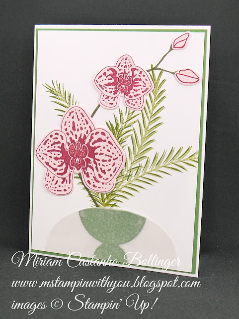 Miriam Castanho-Bollinger, #mstampinwithyou, stampin up, demonstrator, all occasions card, climbing orchids stamp set, christmas pines stamp set, frozen treats framelits, layering ovals, big shot, wink of stella, su