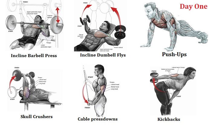 Best Beginner Weight Lifting Routines ~ multiple fitness