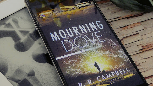 Mourning Dove by R.R. Campbell