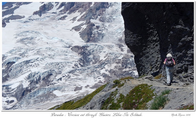Paradise: Crevices cut through Glaciers. Likes Its Solitude.
