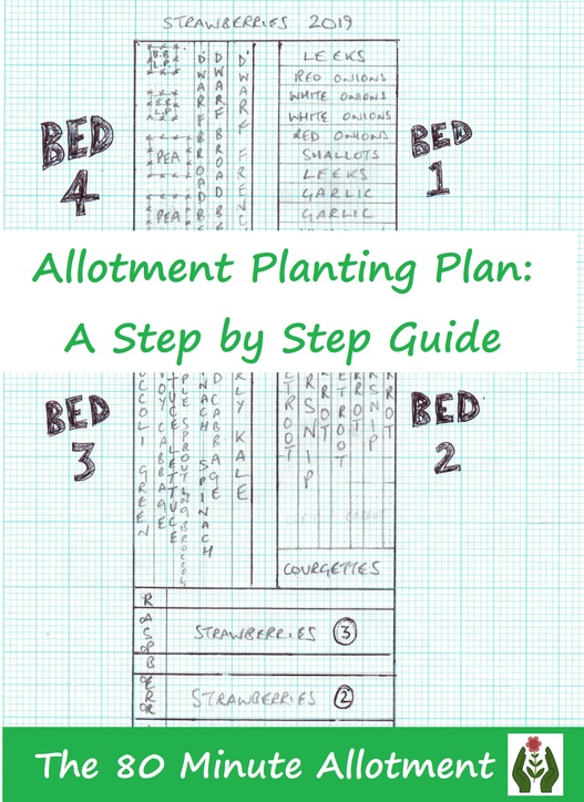 Allotment Planting Plan A Step By Guide