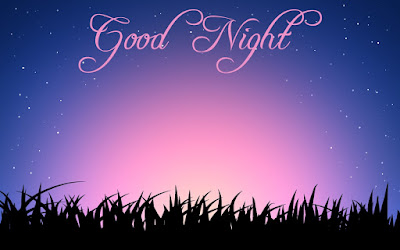 100 Good Night Wishes Messages Status in Hindi | Good Night Quotes