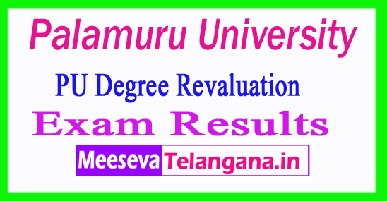 Palamuru University UG Revaluation Exam Results