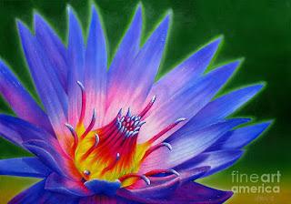 pinturas-al-oleo-de-flores-grandes