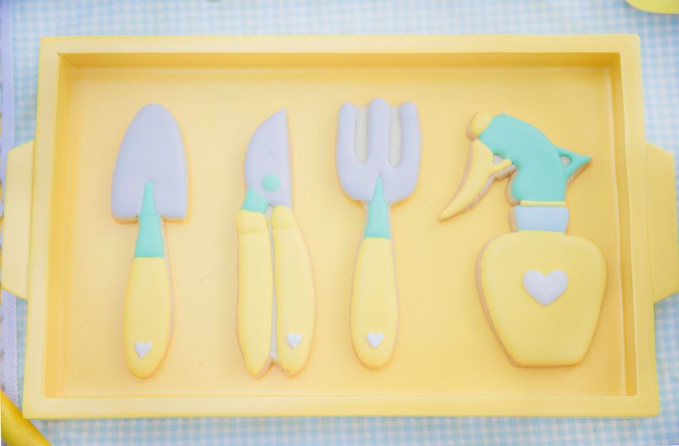 cookies paloma toralles flor de sol fotografia alba apen de corazon