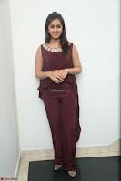 Nikki Galrani in a Brown Shining Sleeveless Gown at Nakshatram music launch ~  Exclusive 036.JPG