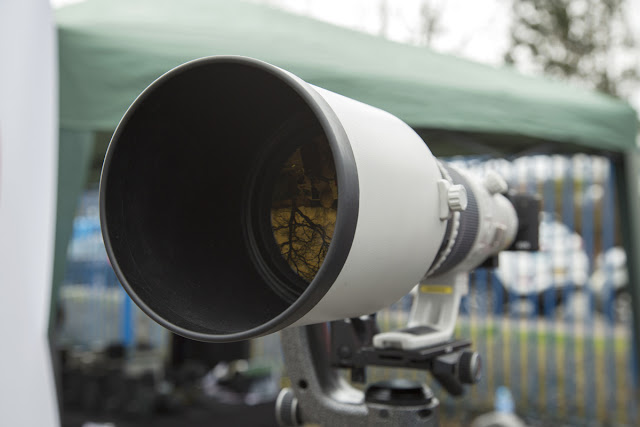 The Canon EF 500mm f/4L with a 1.4x Extender on a Canon EOS M50 body