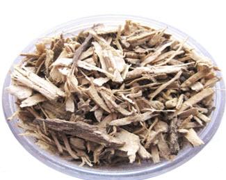 Roots of Piper methylsticum