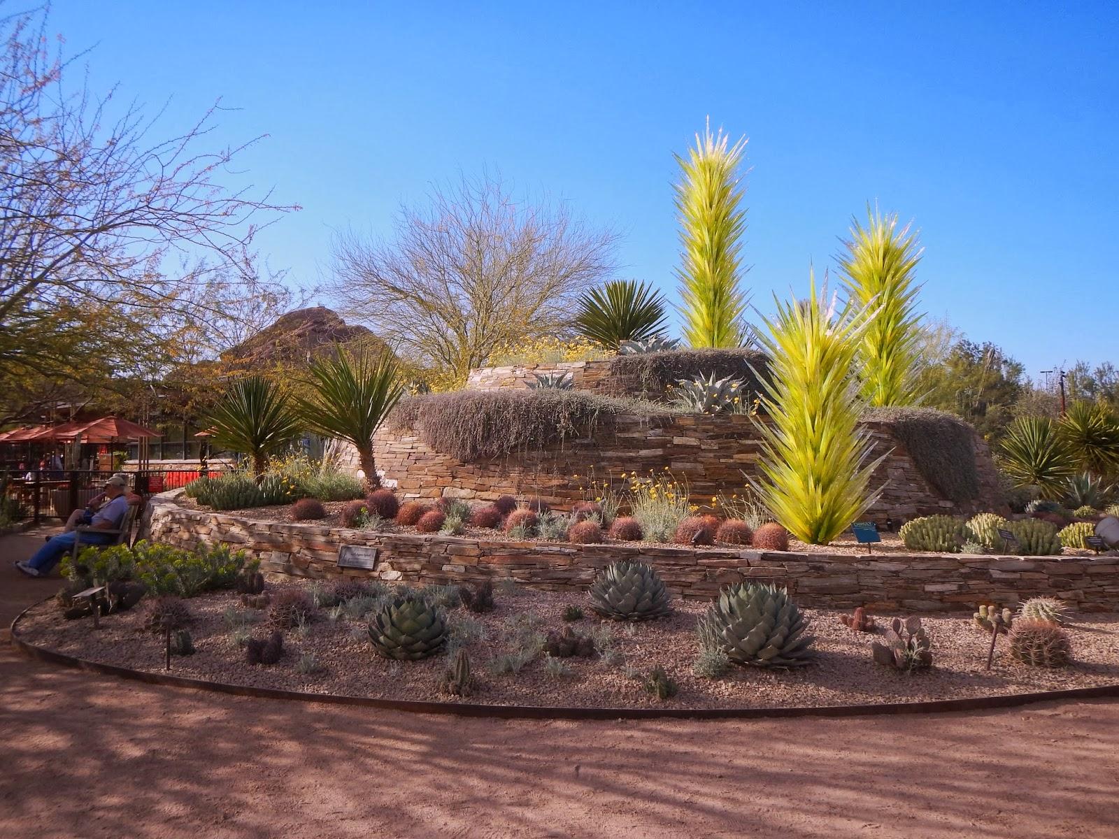 Desert Botanical Garden Phoenix Admission Fee Garden Ftempo