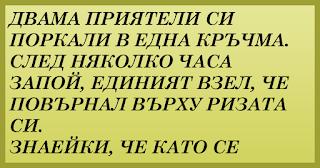 ВИЦОВЕ ~ Двама приятели си поркали в една кръчма
