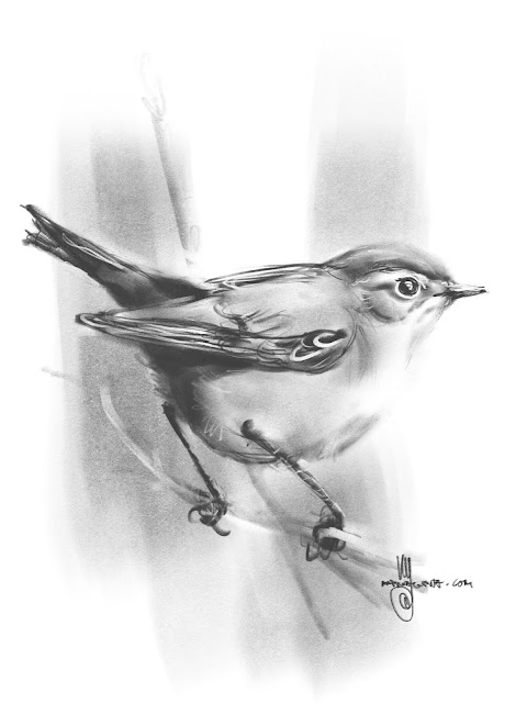 Chiffchaff bird painting