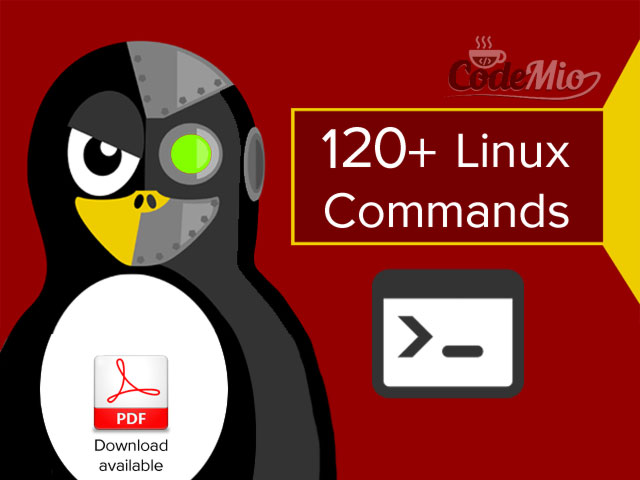 120+ Linux Commands That Are Actually Useful - Codemio - A
