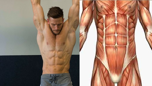 Your Best Guide to Getting 6 Pack abs