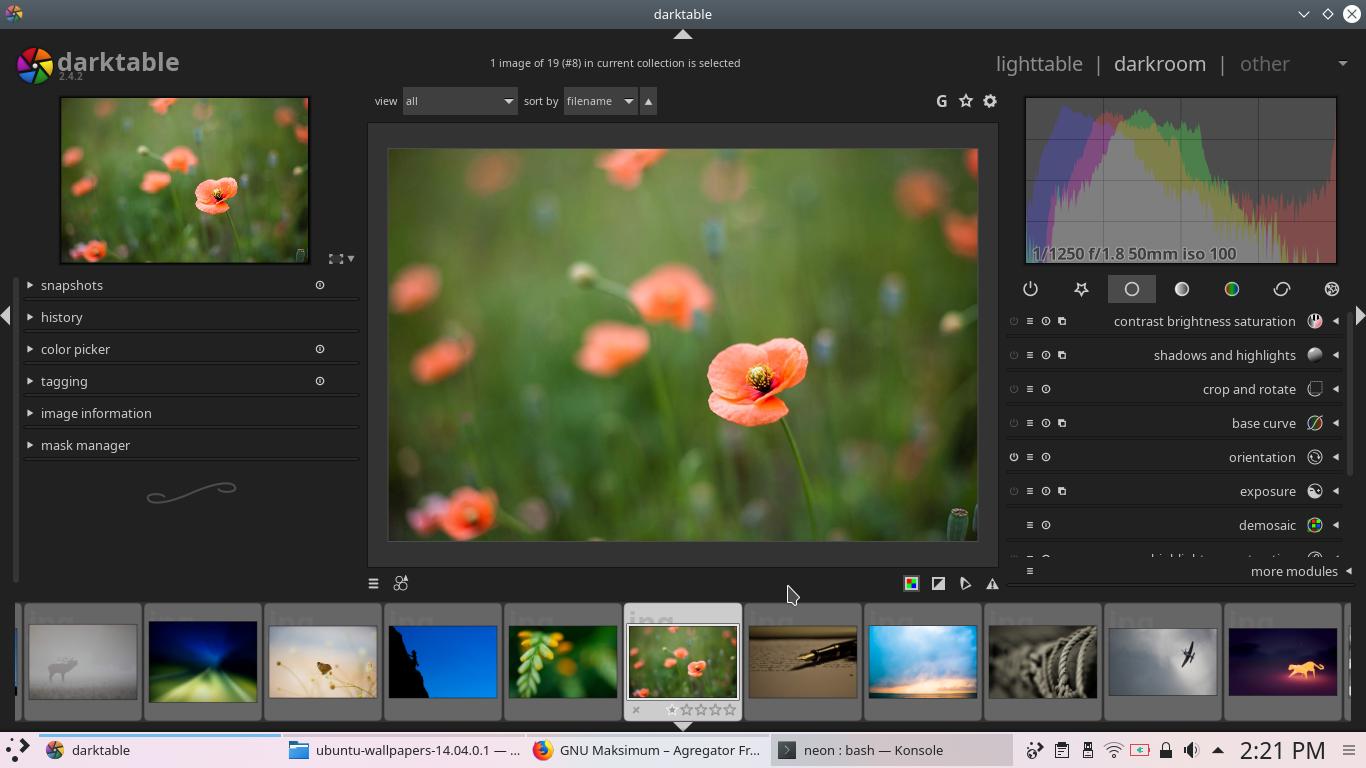 Ubuntu Buzz !: KDE neon for Graphic Designers