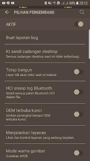 Cara-Mengaktifkan-Mode-Pilihan-Pengembang-Android