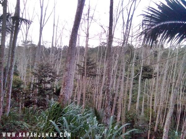 Air Terjun Dusun Kuning di Bangli