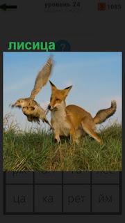 1100 слов бежит лисица и на ходу поймала птицу 24 уровень