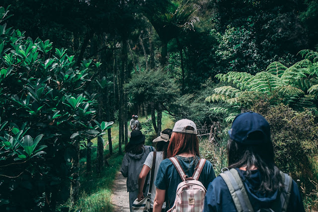 backpackers hiking down a forested trail