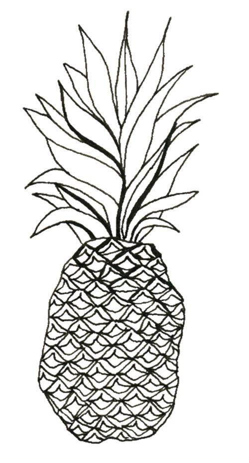 Final Major Project: Hannah's Pineapple