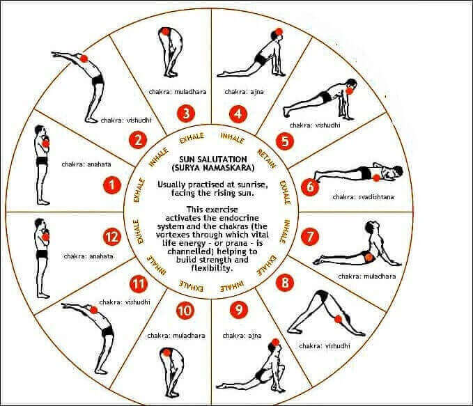 sun-salutation,surya-namaskar steps hindi,suryanamaskar how to do