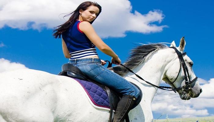 La parabola del cavallo bianco