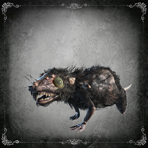 Labyrinth Rat