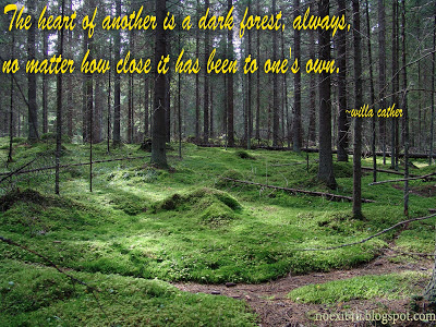 FOREST QUOTES WALLPAPER