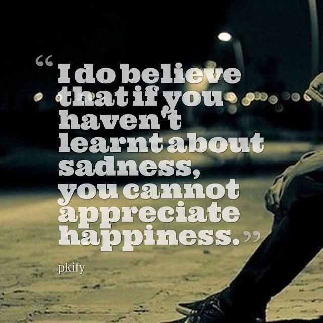 I do believe that if you haven't learnt about sadness, you cannot appreciate happiness Sad Quotes