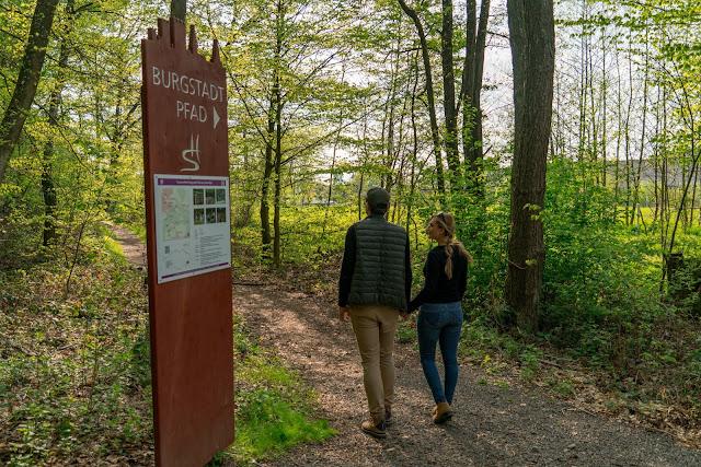 Premiumwanderweg - Traumschleife Burgstadt-Pfad – Kastellaun | Kyrill-Sturmwurferlebnispfad | Wandern-Hunsrück 02