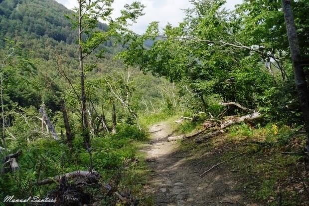 Verso la Cascata della Morricana