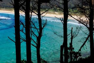 playa san xurso, coruña, ferrol, narón, surf, colores, paisajes vivos, galicia, Munimara,