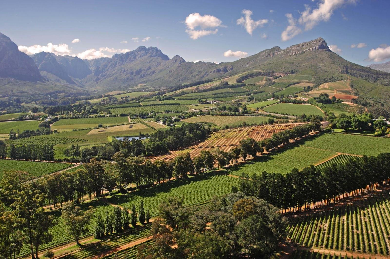 Home Stellenbosch