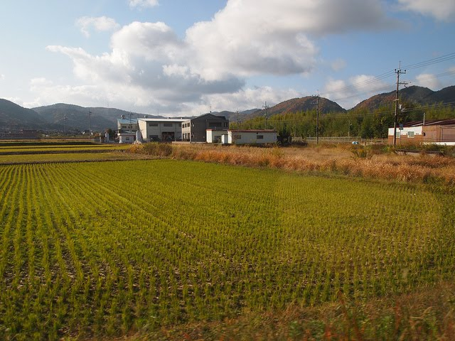 Work as a farmer in exchange for free-lodging in Kyoto