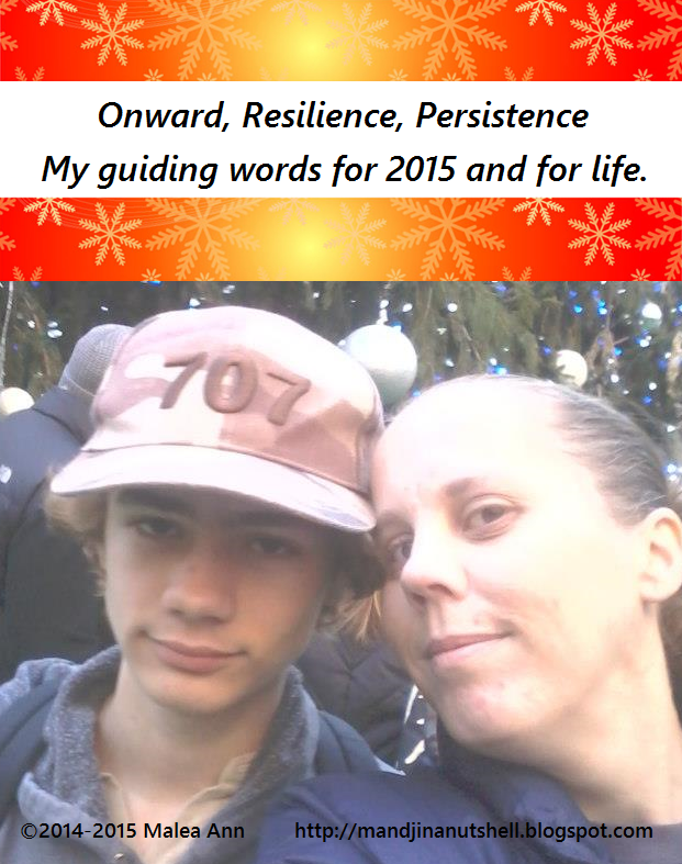 onward persistence resilience