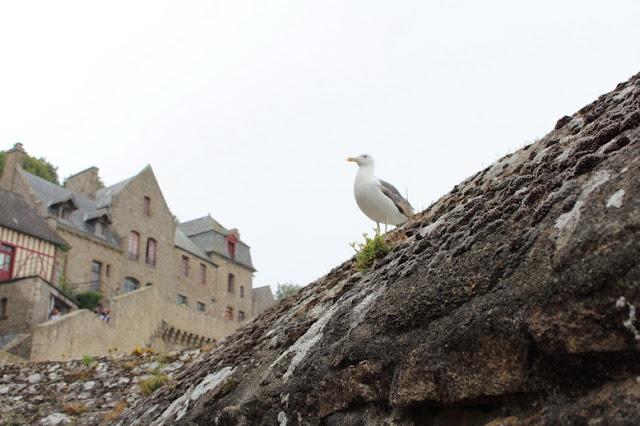 sosta camper a Mont saint Michel