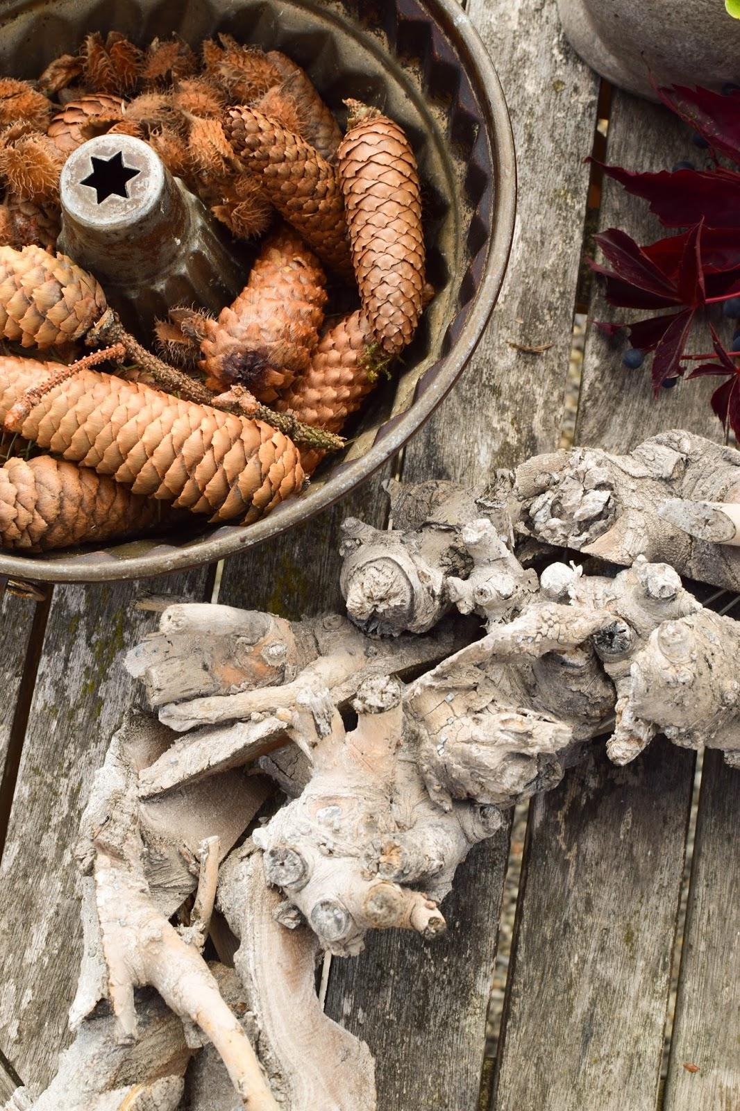 3 Ideen für DIY Kränze für den Herbst: selbermachen Holzkranz Naturdeko Lampionblume Moos Astern Eichenlaub