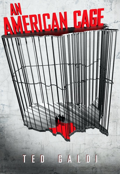 an-american-cage, ted-galdi, book