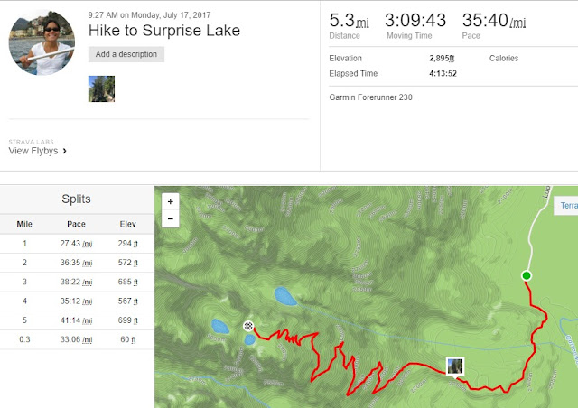 Hike to Surprise Lake Stats from Garmin