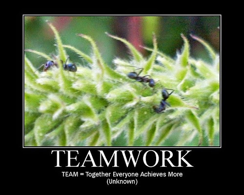 QUOTES: Teamwork Quotes
