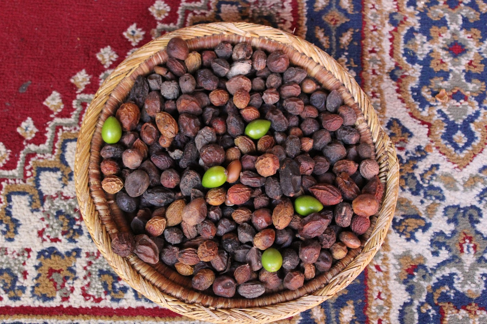 Digested Argan fruit