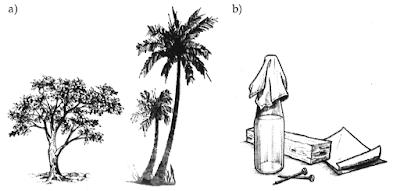 Gambar Tumbuhan