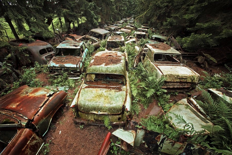 Chatillon Car Graveyard, Belgium - A 70 Year Old Traffic Jam In Belgium Forest