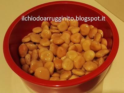 lupino-legume